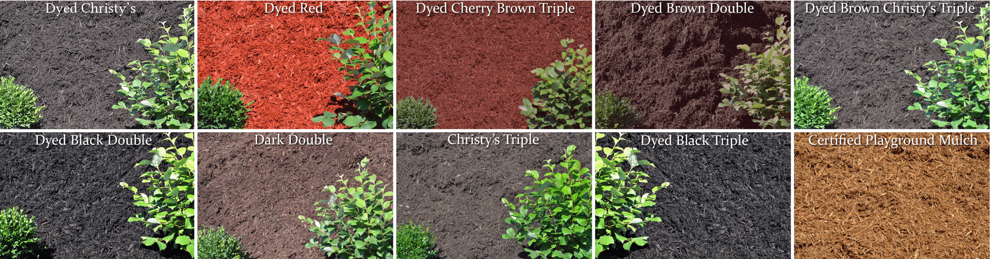 10 of the mulches available at Dragun's with different textures and colors.